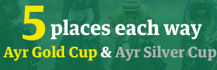 Ayr 5 places